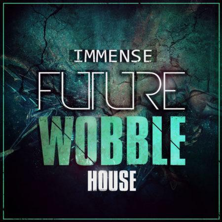 immense-future-wobble-house-myloops