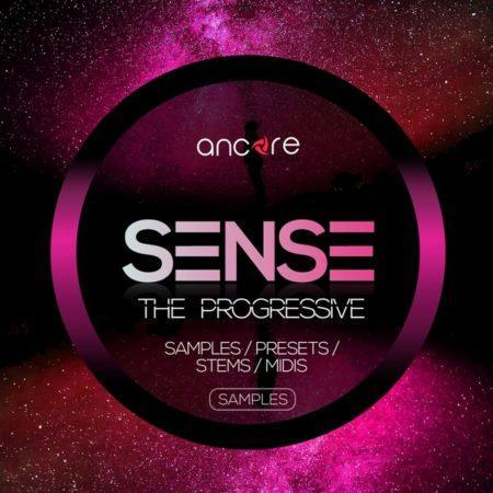 ancore-sounds-sense-the-progressive