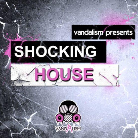 Shocking House By Vandalism