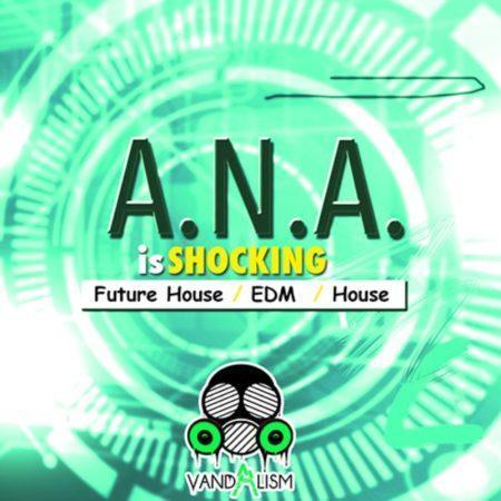 ANA Is Shocking By Vandalism