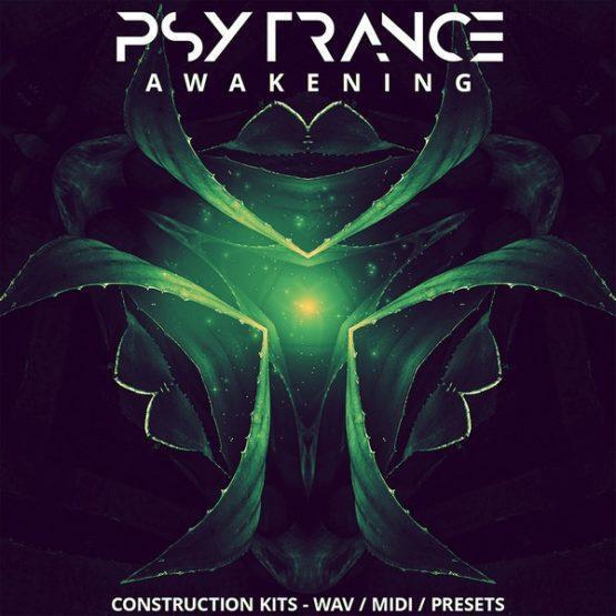 psy-trance-awakening-construction-kits