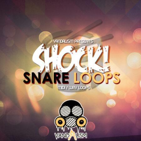 Shock Snare Loops By Vandalism