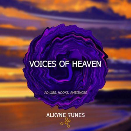 alkyne-tunes-voices-of-heaven-sample-pack