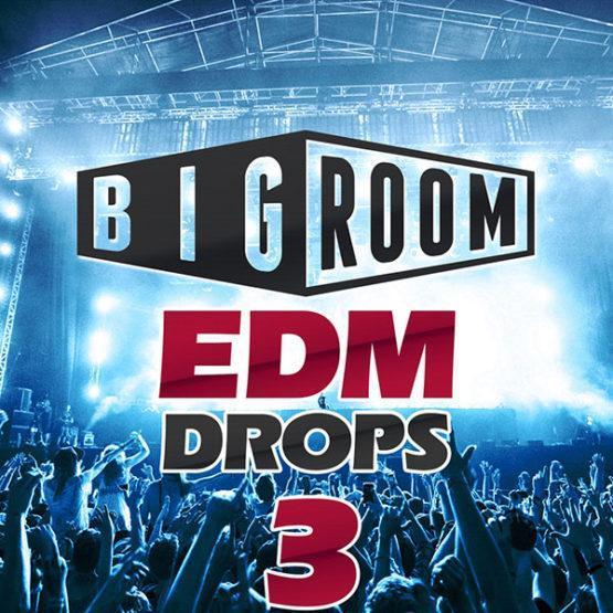 mainroom-warehouse-bigroom-edm-drops-3