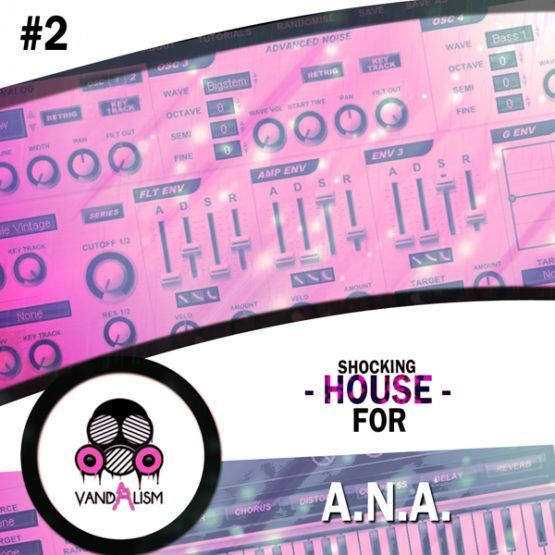 Shocking House 2 For ANA by Vandalism