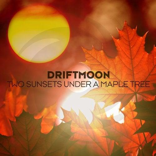 driftmoon-sylenth1-essentials-soundset-1-myloops