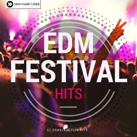 EDM Festival Hits