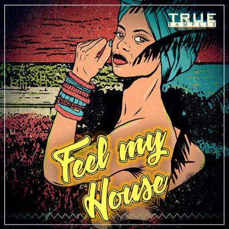 TS - Feel My House
