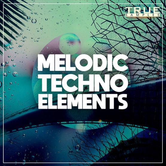 TS - Melodic Techno Elements