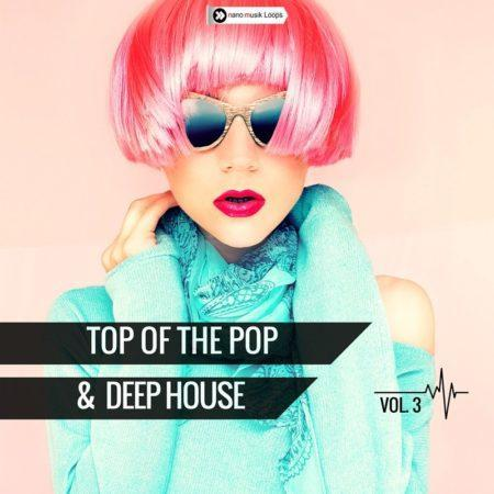 Top Of The Pop & Deep House Vol 3