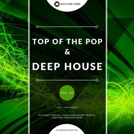 Top Of The Pop & Deep House Vol 2