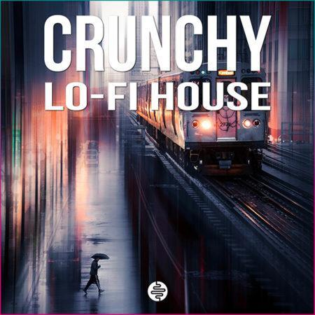 crunchy-lo-fi-house-sample-pack-ost-audio