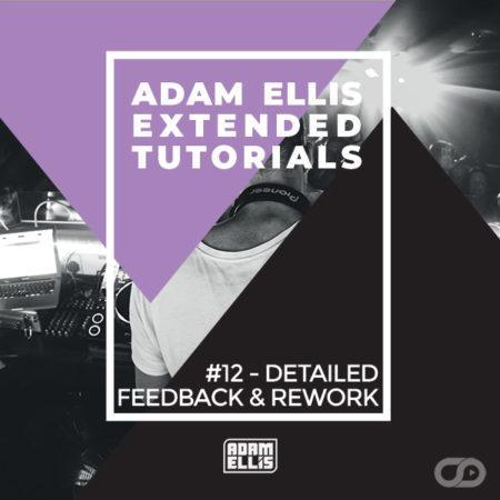 adam-ellis-extended-tutorial-12-detailed-feedback-and-rework