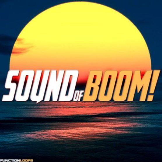 sound-of-boom-function-loops