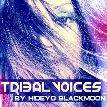 tribal-voices-sample-pack-function-loops
