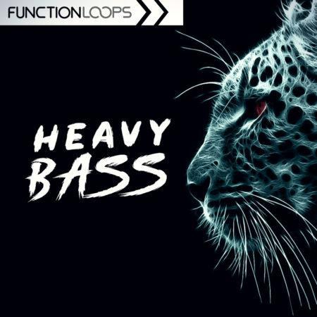 Heavy Bass: Dubstep & Riddim