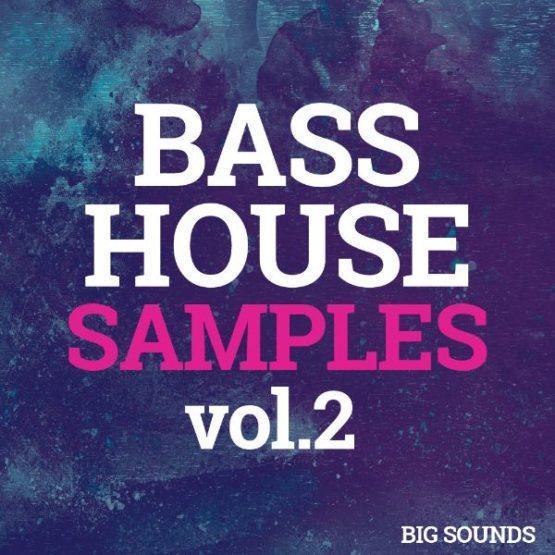 Big Sounds Bass House Samples Vol.2