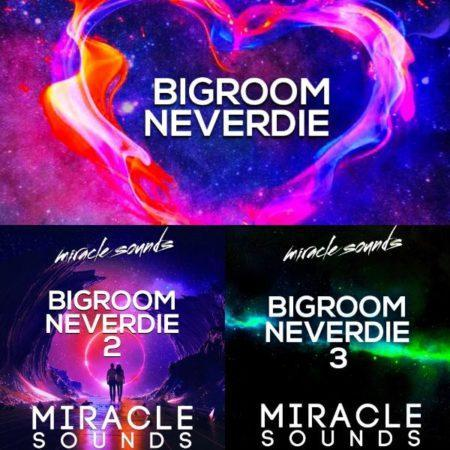 MS081 Miracle Sounds - Bigroom neverdie Bundle
