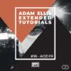 adam-ellis-extended-tutorial-acid-FX-myloops