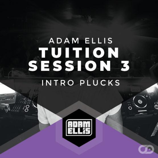 adam-ellis-tuition-session-3-intro-plucks