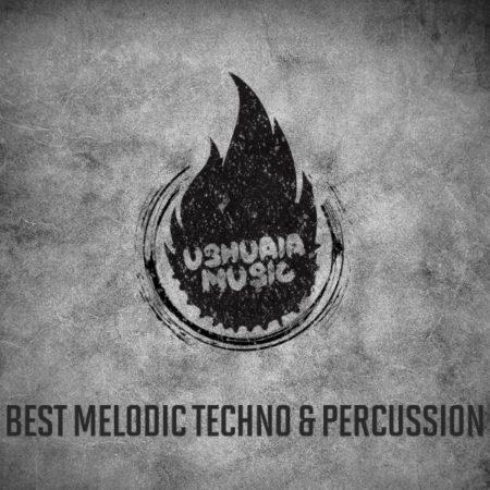 Best Melodic Techno & Percussion