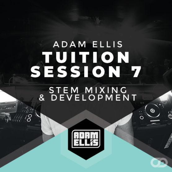 adam-ellis-tuition-session-7-stem-mixing-and-development