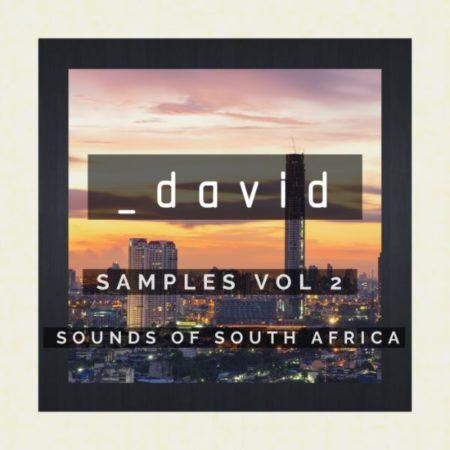 _david Samples Vol. 2 - Sounds Of South Africa