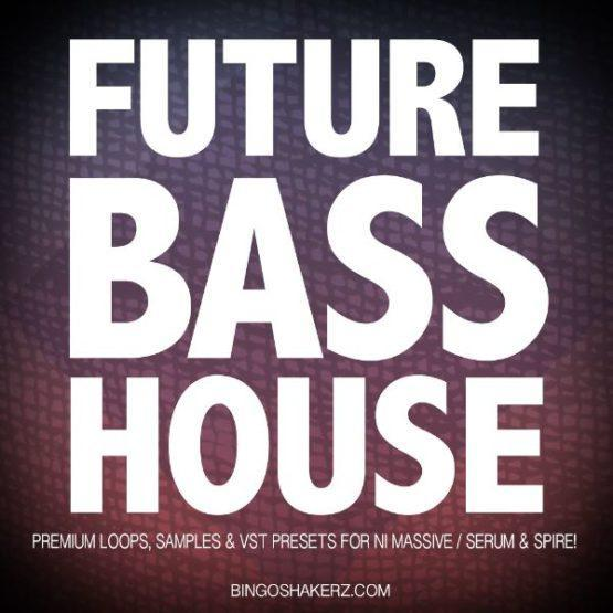 Future Bass House By Bingoshakerz