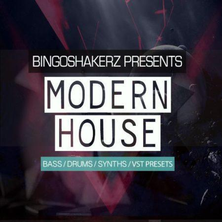 Modern House By Bingoshakerz