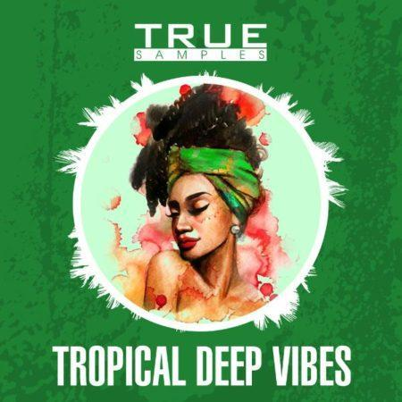Tropical Deep Vibes Sample Pack By True Samples