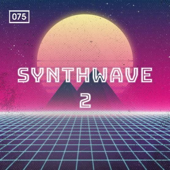 Synthwave 2 Sample Pack By Bingoshakerz