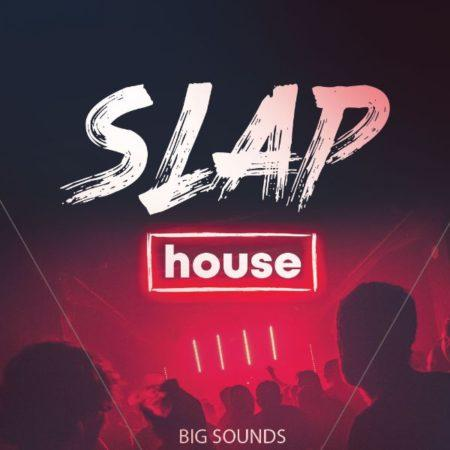 Big Sounds Slap House