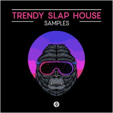Trendy Slap House By OST Audio