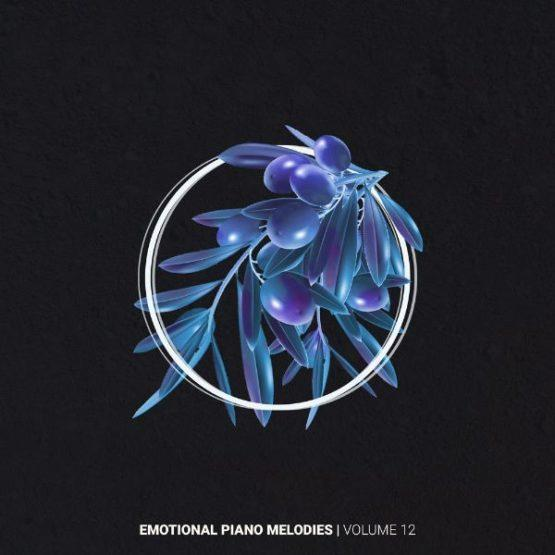 Emotional Piano Melodies Volume 12 By Helion Samples
