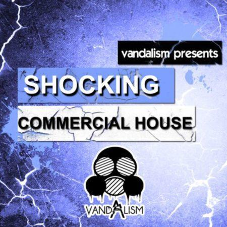 Shocking Commercial House By Vandalism