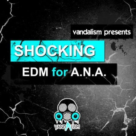 Shocking EDM For A.N.A. by Vandalism