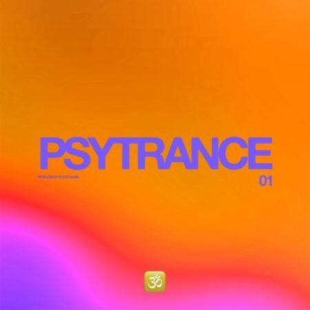 Psytrance 1 – Ableton Live Template (By Choco Music)