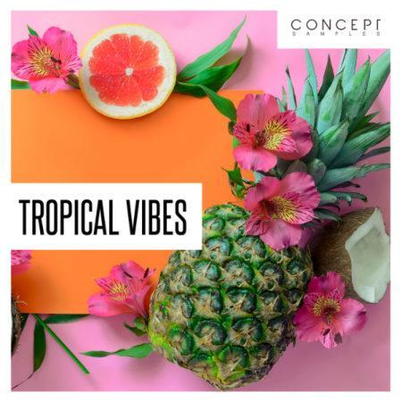 Tropical Vibes By Concept Samples