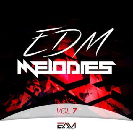 edm-melodies-vol-7-by-essential-audio-media