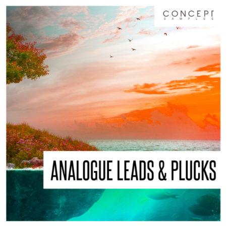 Analogue Leads and Plucks By Concept Samples