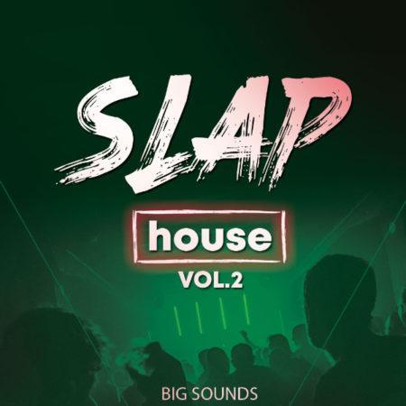 Big Sounds Slap House Vol.2 By HighLife Samples