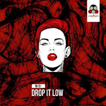 MIDI Drop It Low By Vandalism