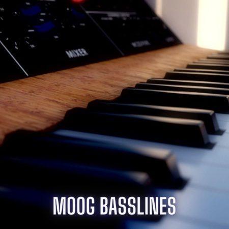 Moog Basslines by Steven Angel