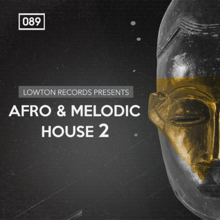 Afro & Melodic House 2 by Lowton Records