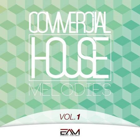Commercial House Melodies Vol 1