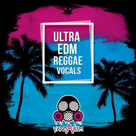 Ultra EDM Reggae Vocals