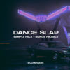 Dance Slap House (Soundlabs HQ vol. 1)