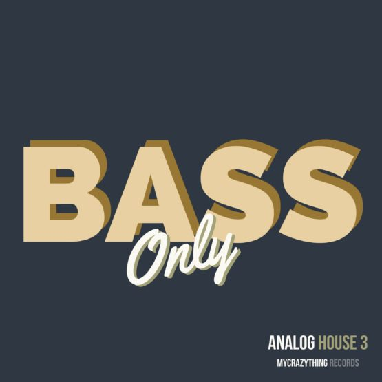 Bass Only Analog House 3