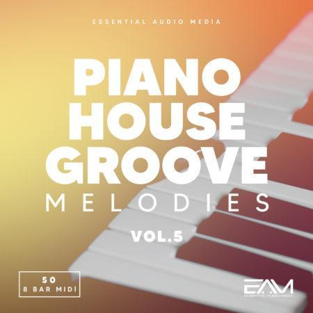 Piano House Groove Melodies Vol 5